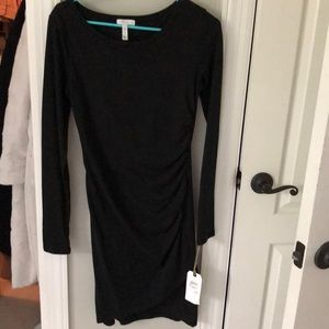 Long sleeved Leith fitted dress